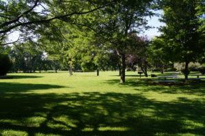 Gunbarrel Commons Park